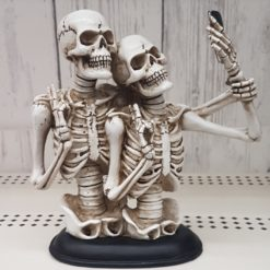 skeleton couple making a selfie